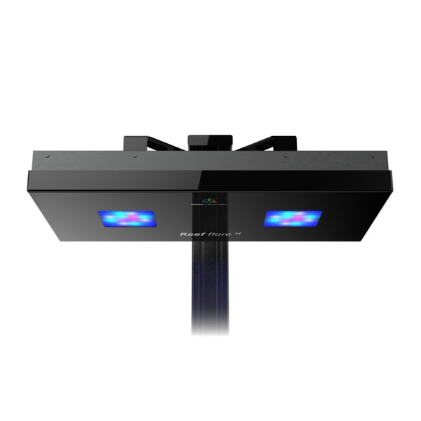 Reef Factory, Reef Flare LED