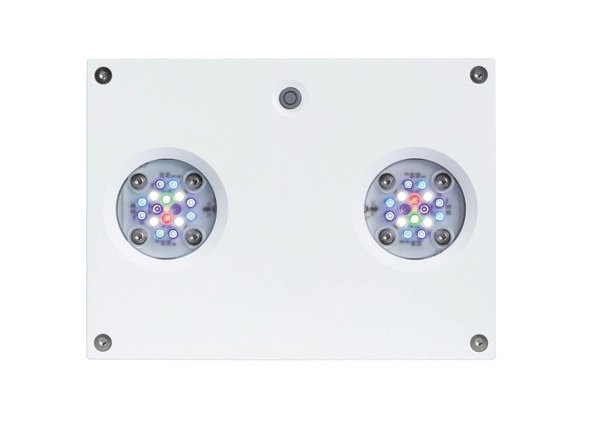 AI Hydra HD 32 LED